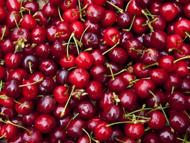 Giá cherry ở Hà Nội